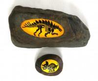 恐竜-化石